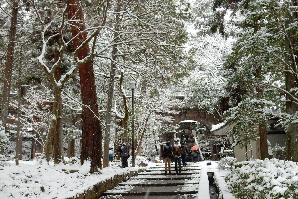 雪京都 493