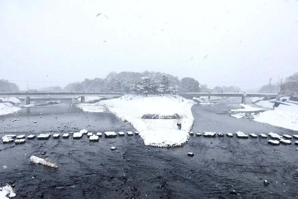 雪京都 530