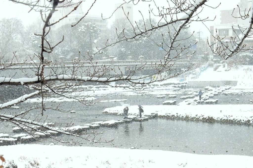 雪京都 540