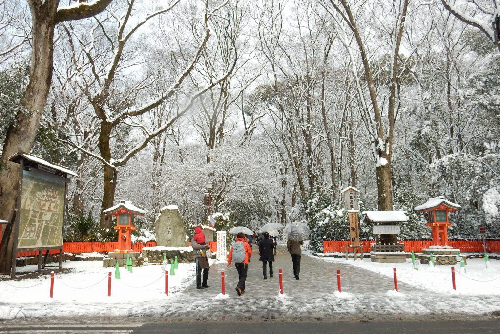 雪京都 544