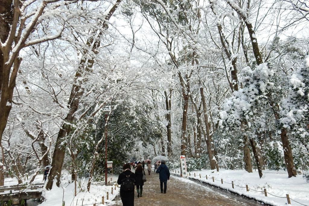 雪京都 548