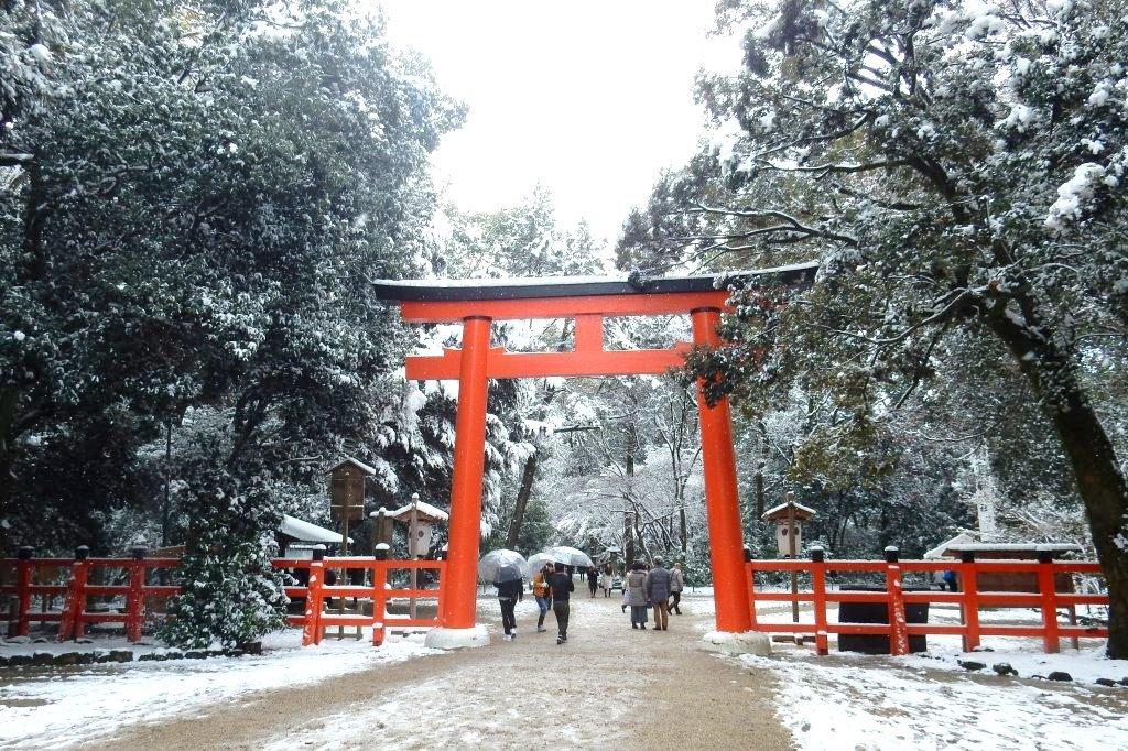 雪京都 629