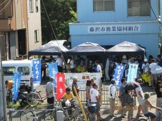 藤沢朝市 (2)