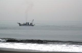 はまぐり貝桁びき網漁 (3)