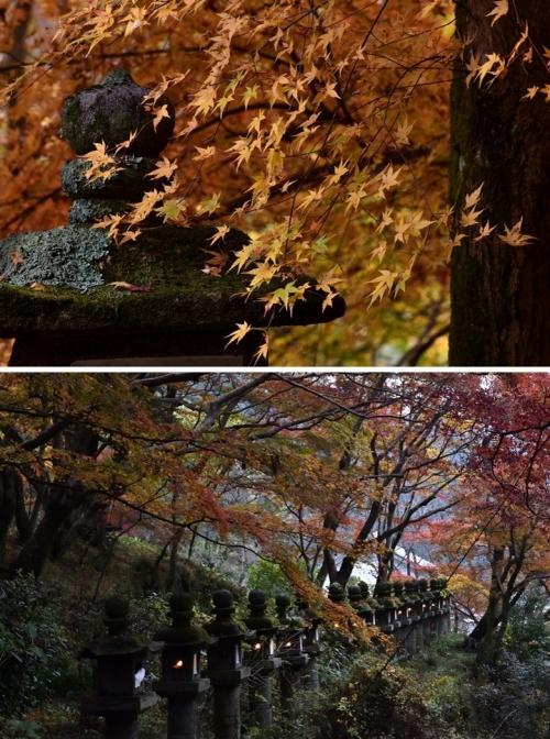 ⑨談山神社-5