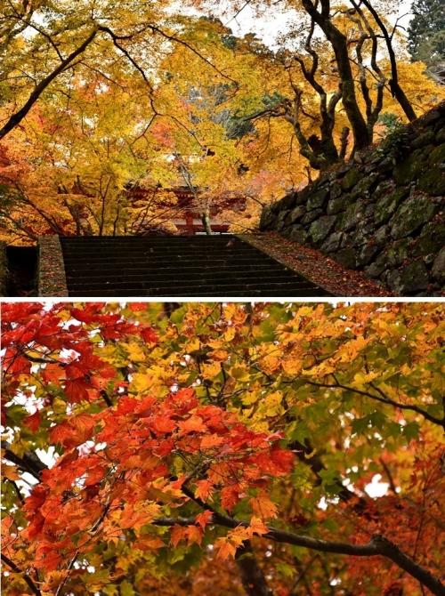 ⑥談山神社-2