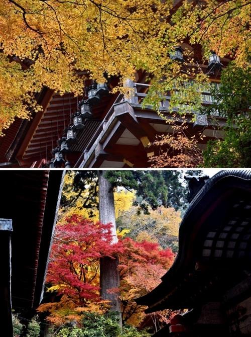 ④談山神社-3