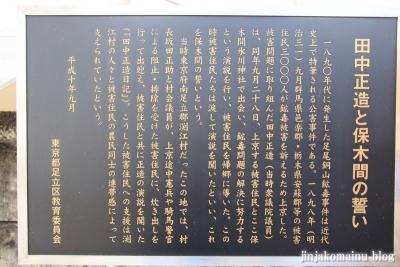 保木間氷川神社(足立区西保木間)5