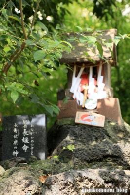 鷲神社(足立区島根)15