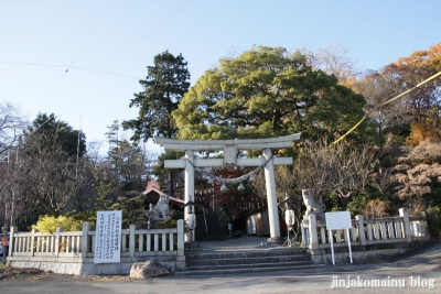 八雲神社(足利市緑町)1