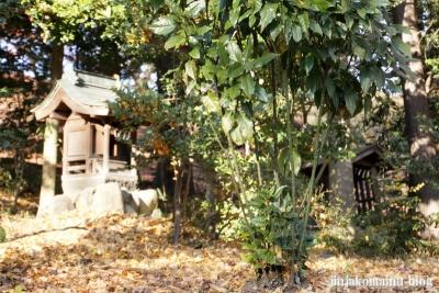 八雲神社(足利市緑町)24