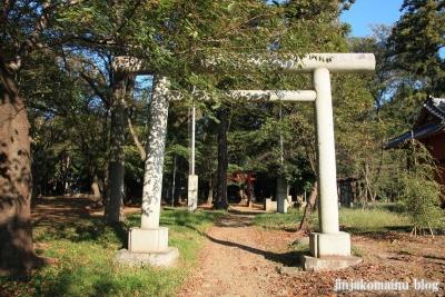 氷川神社(上尾市久保)1