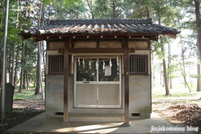 氷川神社(上尾市久保)13