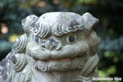 氷川神社(上尾市久保)25