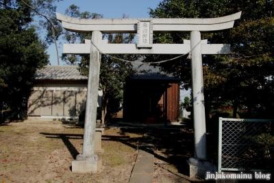 氷川神社(上尾市菅谷)2