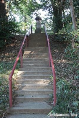 浅間神社(北足立郡伊奈町寿)3
