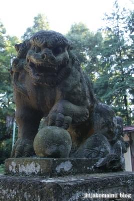 小針神社(北足立郡伊奈町寿)16