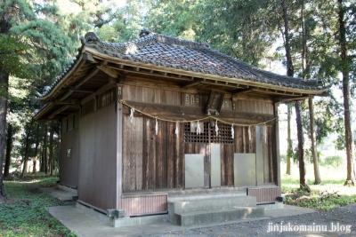 倉田氷川神社(桶川市倉田)9