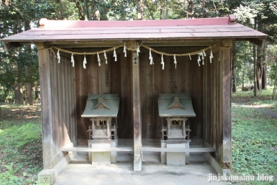 倉田氷川神社(桶川市倉田)14