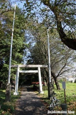 倉田氷川神社(桶川市倉田)1