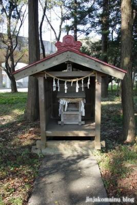 倉田氷川神社(桶川市倉田)16