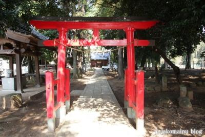 氷川神社(桶川市坂田)6