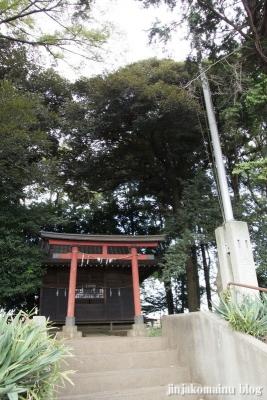 八雲神社(桶川市坂田)1