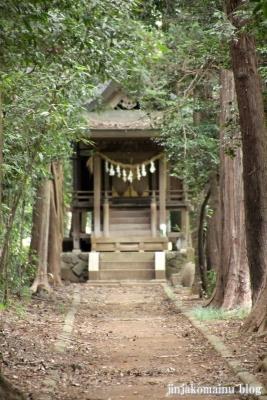 氷川神社(上尾市中分)3