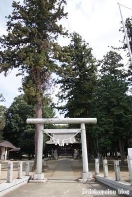 八合神社(上尾市小泉)1