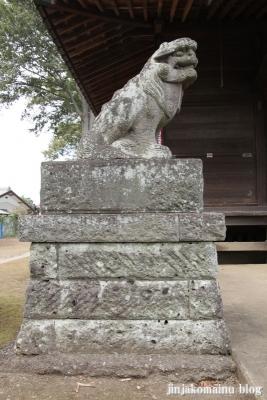 諏訪神社(上尾市畦吉)22