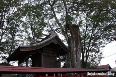 橘神社(上尾市平方)10
