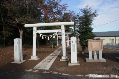 氷川神社(上尾市今泉)1