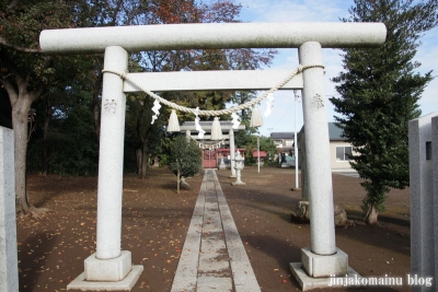 氷川神社(上尾市今泉)2