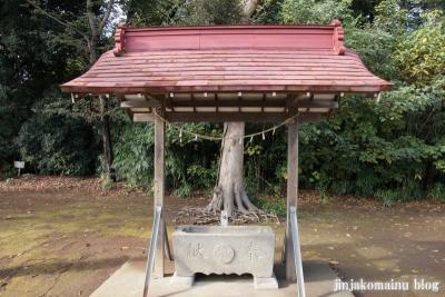 氷川神社(上尾市今泉)5