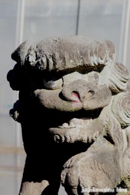 氷川神社(上尾市地頭方)20