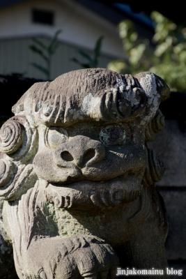 氷川神社(上尾市地頭方)21