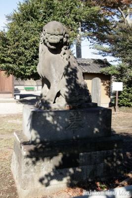 氷川神社(上尾市地頭方)23