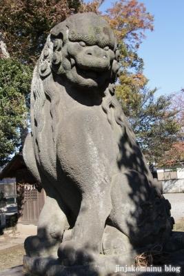 氷川神社(上尾市地頭方)24