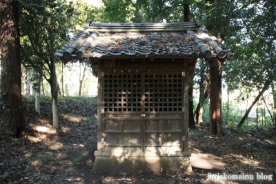 大鷲神社(上尾市戸崎)4