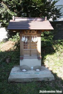 氷川神社(さいたま市北区今羽町)9