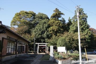 氷川神社(さいたま市見沼区東大宮)1