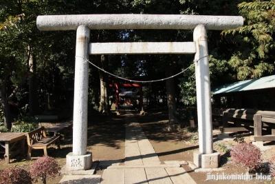 氷川神社(さいたま市見沼区東大宮)4