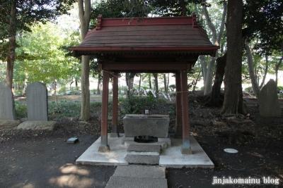 氷川神社(さいたま市見沼区東大宮)9