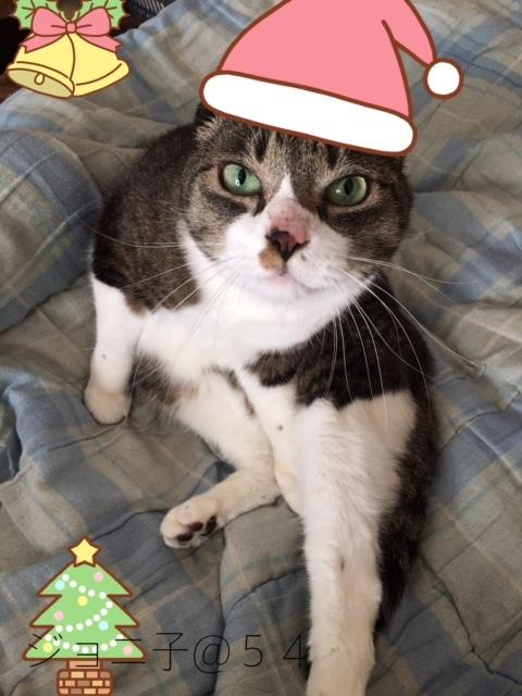クリスマスイブ3