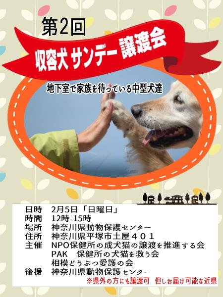 サンデー譲渡会2017-2-5
