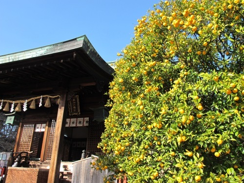 名古屋覚王山 092