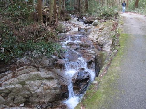 津の山里 057