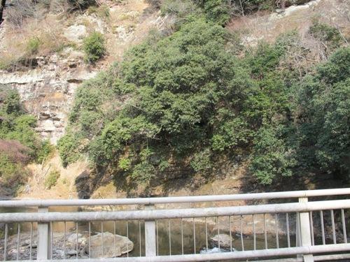 津の山里 096