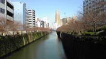 Keen London+Tokyo-DVC00031.jpg