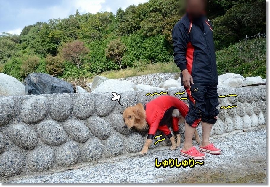 DSC_5558 しゅりしゅり~